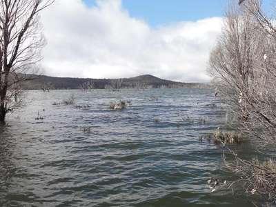 Arthurs Lake water quality
