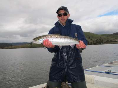 More salmon stocked at Craigbourne Dam and Meadowbank Lake