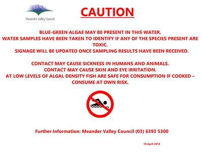 Caution, blue green algae may be present at Four Springs Lake