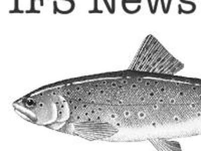 IFS reports to peak angling body AAT