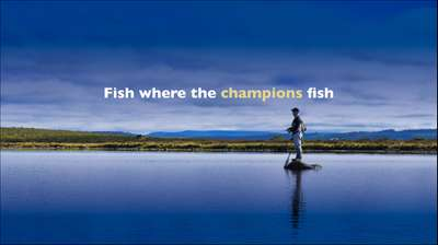 Fish where the champions fish