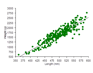 This graph shows the spread of the length and weight of all the brown trout captured during the survey