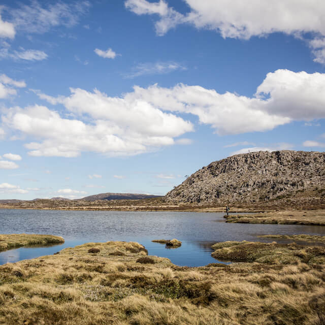Discover why Tasmania is one of the world's premium fly fishing destinations